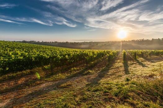 Matrimonio in Toscana: i borghi più belli della provincia di Siena